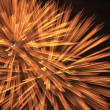 Fireworks over a night sky — Stock Photo #3148769