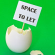 Empty eggshell as concept of estate rent — Stock Photo