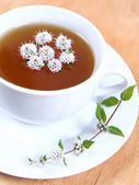 Green tea with flowers of peppermint — Stock Photo
