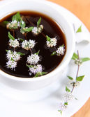 Tea with mint twigs — Stock Photo