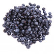 Stock Photo: Blue berry