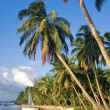 Tropical beach landscape - Stock Photo