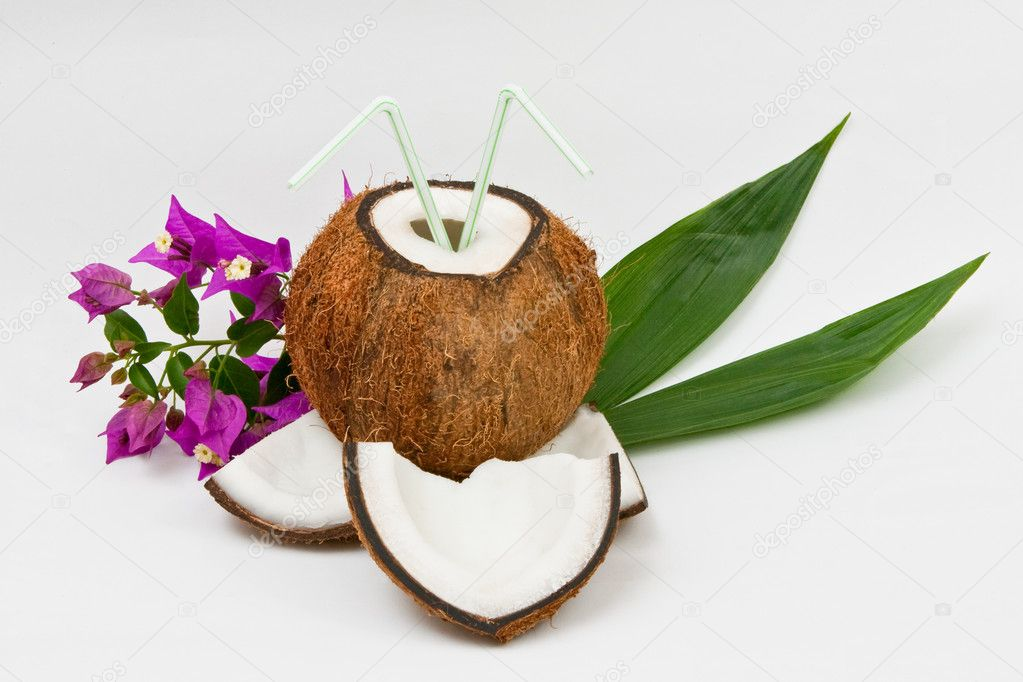 Coconut fruit isolated on white background — Stock Photo #3046495