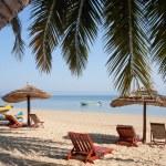 Palm beach — Stock Photo