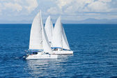 Three catamarans — Stock Photo