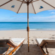 Deckchairs on beach — Stock Photo #3505595