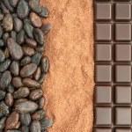 Cocoa and chocolate — Stock Photo #3657654