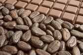 ココアおよびチョコレート — ストック写真