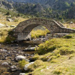 Stone bridge over river — Stock Photo