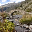 Small stone bridge — Stock Photo