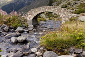 Stone bridge over river - Pyrenees — Стоковое фото