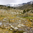 Swamp in Pyrenees — Stock Photo