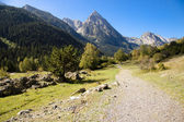 Path to Sant Maurici lake. — Stock Photo
