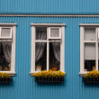 Nordic typical windows - Iceland, Reykjavik — 图库照片