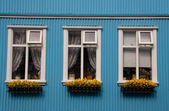 Nordic typical windows - Iceland, Reykjavik — Stock Photo
