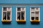 Windows typiques nordiques - Islande, reykjavik — Photo