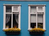 Two windows in Reykjavik - Iceland — Stock Photo