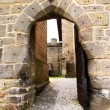 Stock Photo: Entrance to gothic castle