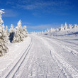 Ski trail on jesenik mountain — Stock Photo