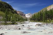 Karagem valley altay mountains russia — Stock Photo