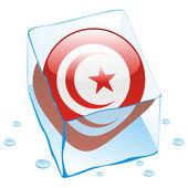 Tunisia button flag frozen in ice cube — Stock Vector