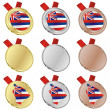 Hawaii vector flag in medal shapes — Stock Vector