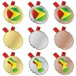 Guyana vector flag in medal shapes — Stock Vector