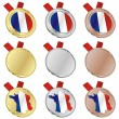 France vector flag in medal shapes — Stock Vector