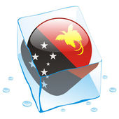 Papua new guinea button flag frozen — Stock Vector