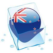 New zealand button flag frozen — Stock Vector