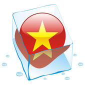 Vietnam button flag frozen in ice cube — Stock Vector