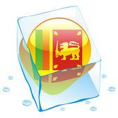 Sri lanka button flag frozen in ice cube — Stock Vector