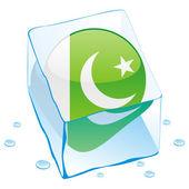 Pakistan knappen flagga fryst i isbit — Stockvektor