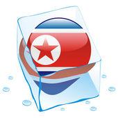 Noord-korea knop vlag bevroren in ijs cu — Stockvector
