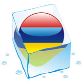Armenia button flag frozen in ice cube — Stock Vector