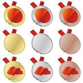 Buthan vektor flaggan i medalj former — Stockvektor