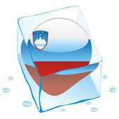 Slovenia button flag frozen in ice cube — Stock Vector