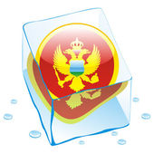 Montenegro button flag frozen in ice cub — Stock Vector