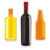 Isolated alcohol bottles — Stock Vector