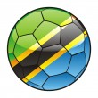Tanzania flag on soccer ball — Stock Vector