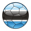 Botswana flag on soccer ball - Stock Vector