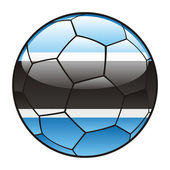 Botswana flag on soccer ball — Stock Vector