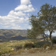 Languedoc - panoramic view — Stock Photo
