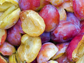 Mellow plums — Stock Photo