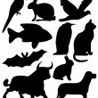Stock Vector: Nine animals black silhouettes