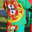 MDressed In Portuguese Flag Outfit — 图库照片 #3185463