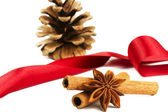 Star anise cinnamon sticks conifer cone and a red ribbon — Stock Photo