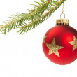 Red christmas ball hanging on a branch — Stock Photo #3735796