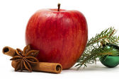 Apple anise cinnamon green christmas ball and a branch — Stock Photo