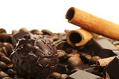 Truffle in front of cinnamon sticks and coffee beans on a chocolate bar — Stock Photo